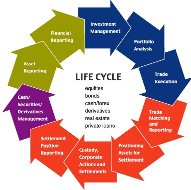 an analysis of life Lecture slides available: pdf powerpoint database analysis contents introduction database analysis life cycle three-level database model basics entities.