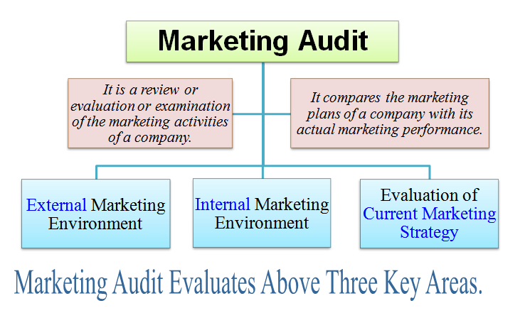 functions and role of a marketing audit Marketing function audit using the marketing mix to analyse your functions  the marketing mix comprises of framework comprising of product, price, place (distribution) and promotion.