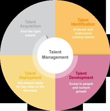 Talent development definition