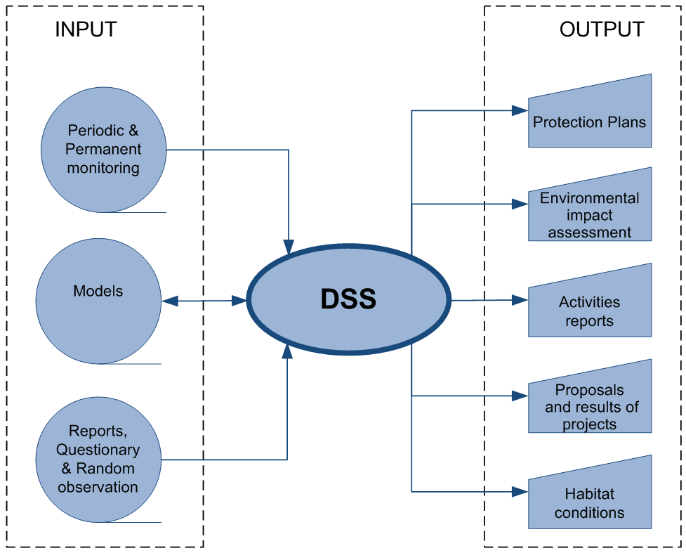 decision support system in the supermarket Agricolus dss is a decision support system for agriculture  store data  related to single crops: productivity, treatments, attacks of  phytopathogenic.
